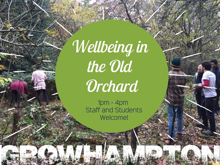 Wellbeing in the Old Orchard